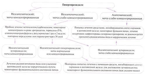 Алгоритм, иллюстрирующий схему принятия решения при гипертиреоидизме кошек