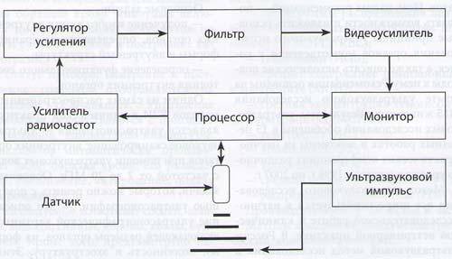 Принципиальная схема ультразвукового прибора (сканера)