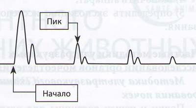 Изолиния развертки электронного луча и отраженные в виде пиков сигналы